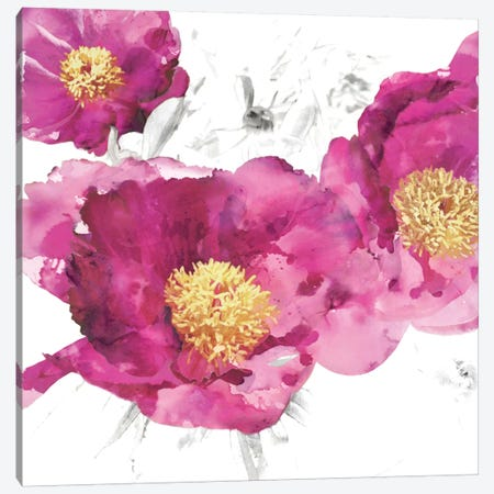 Pink Bloom I Canvas Print #AUS30} by Vanessa Austin Canvas Art
