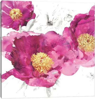 Pink Bloom I Canvas Art Print