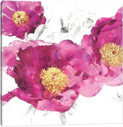 Pink Bloom I Canvas Print #AUS30