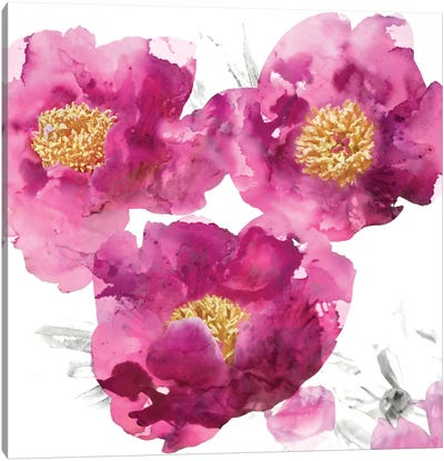 Pink Bloom II Canvas Art Print