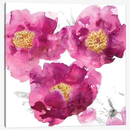 Pink Bloom II Canvas Print #AUS31} by Vanessa Austin Canvas Artwork