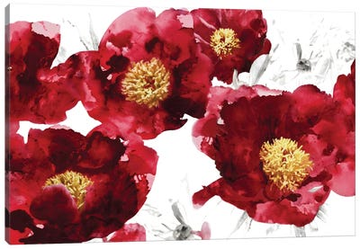 Red Bloom Canvas Art Print