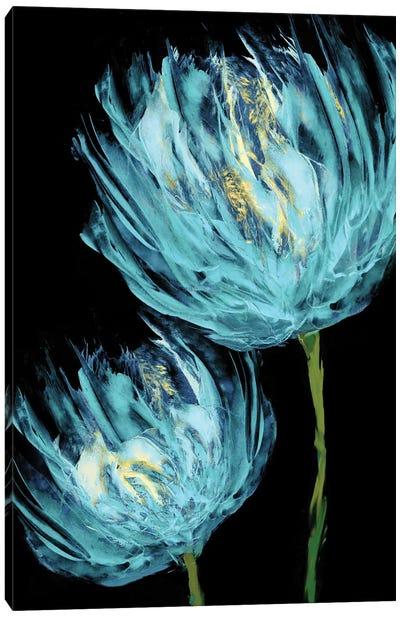 Aqua Tulips II Canvas Art Print