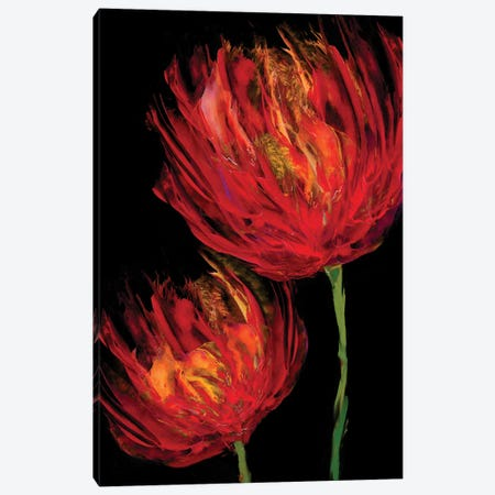 Red Tulips II Canvas Print #AUS41} by Vanessa Austin Art Print
