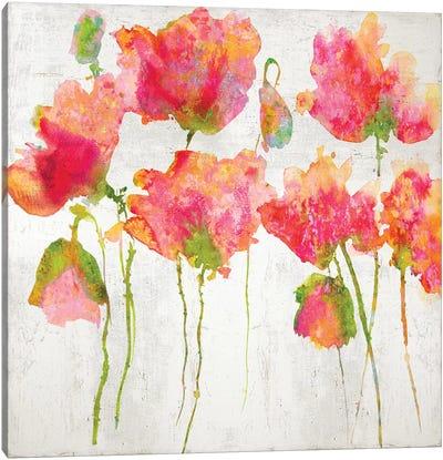 Gatherin in Pink II Canvas Art Print