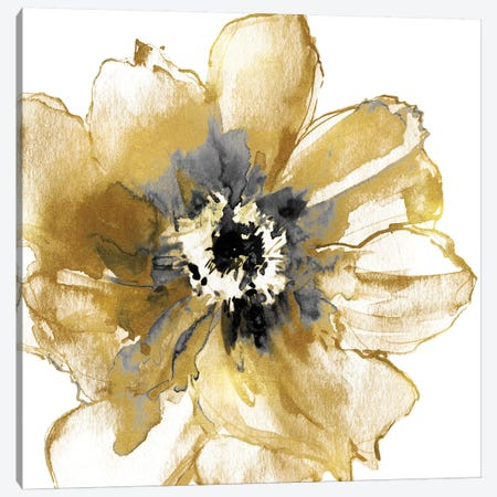 Golden I Canvas Print #AUS52} by Vanessa Austin Canvas Wall Art