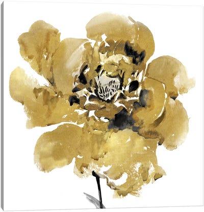 Golden II Canvas Art Print