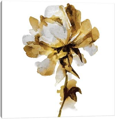 Fresh Bloom I Canvas Art Print