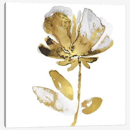 Fresh Bloom II Canvas Print #AUS55} by Vanessa Austin Canvas Art Print
