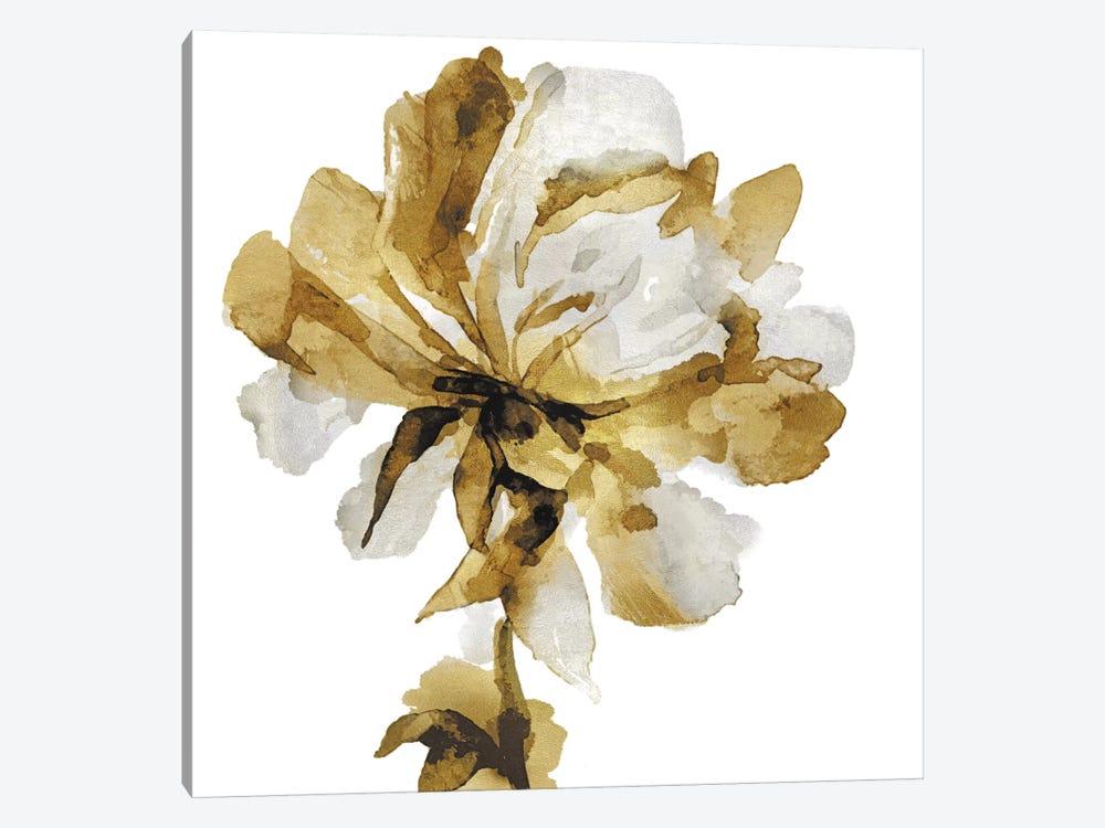 Fresh Bloom III by Vanessa Austin 1-piece Canvas Art