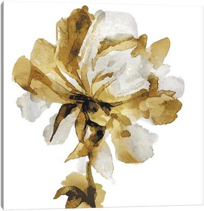 Fresh Bloom III Canvas Art Print