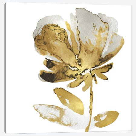 Fresh Bloom IV Canvas Print #AUS57} by Vanessa Austin Art Print
