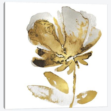 Fresh Bloom IV Canvas Print #AUS57} by Vanessa Austin Art Print