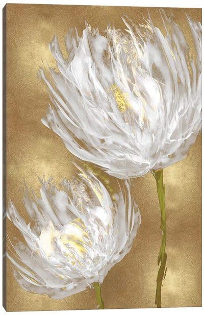 Tulips on Gold II Canvas Art Print