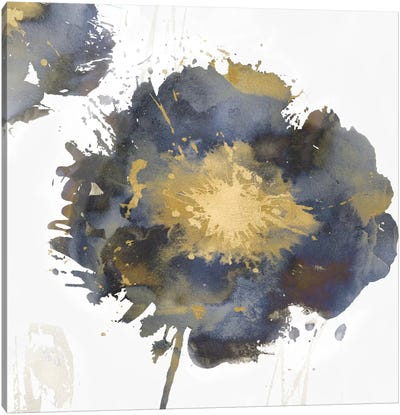 Flower Burst II Canvas Art Print