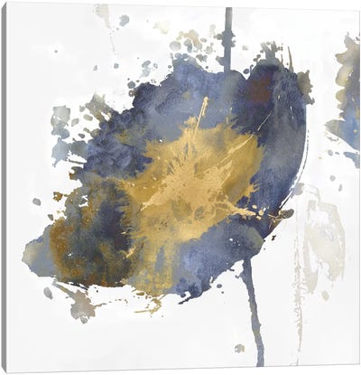 Flower Burst III Canvas Art Print