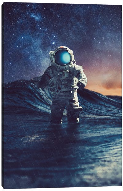 Stranded II Canvas Art Print