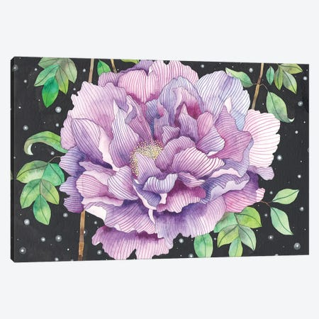 Midnight Bloom Canvas Print #AVC22} by Ana Victoria Calderón Art Print