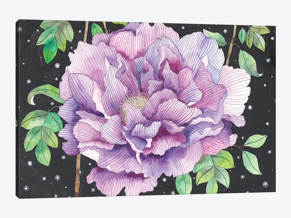 Midnight Bloom by Ana Victoria Calderon 1-piece Canvas Wall Art