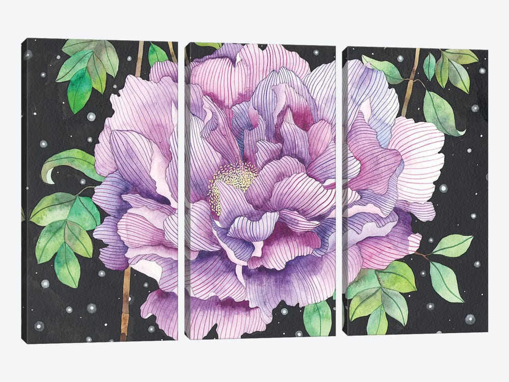 Midnight Bloom by Ana Victoria Calderon 3-piece Canvas Art