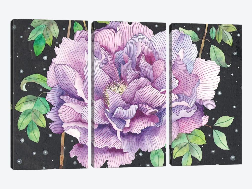 Midnight Bloom by Ana Victoria Calderón 3-piece Canvas Art