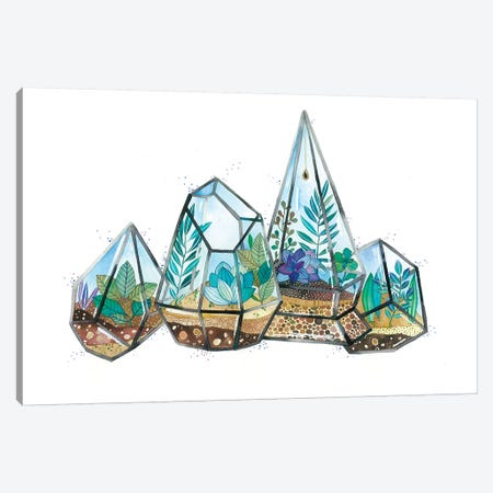 Quartz Terrarium Canvas Print #AVC44} by Ana Victoria Calderón Canvas Art