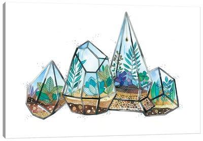 Quartz Terrarium Canvas Art Print