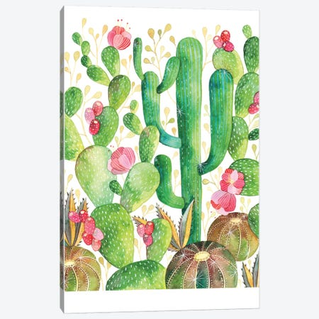 Cacti Canvas Print #AVC6} by Ana Victoria Calderón Canvas Wall Art