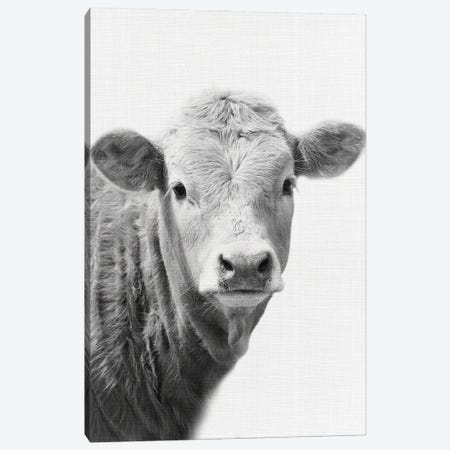 Cow II Canvas Print #AVN22} by Amelie Vintage Co Canvas Art