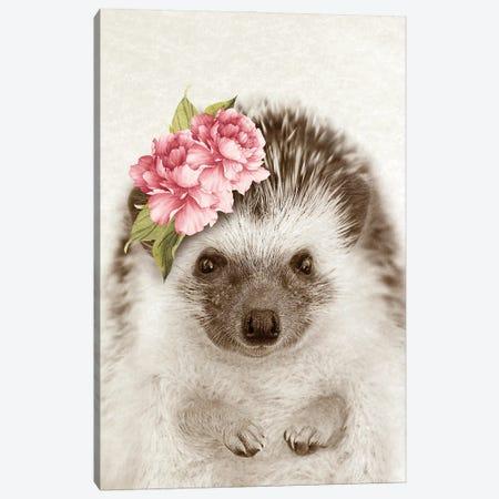 Floral Hedgehog Canvas Print #AVN35} by Amelie Vintage Co Canvas Artwork