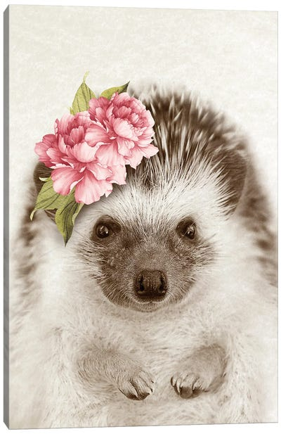 Floral Hedgehog Canvas Art Print