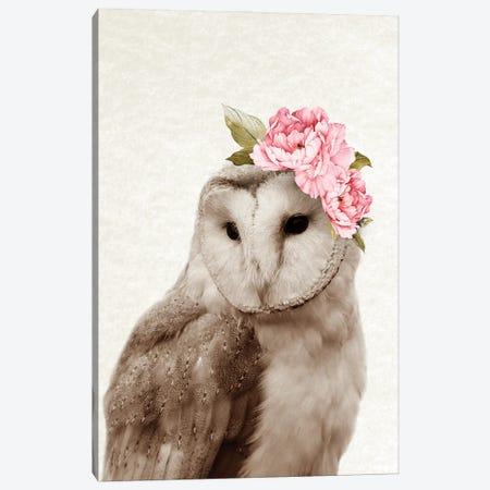 Floral Owl Canvas Print #AVN45} by Amelie Vintage Co Canvas Print