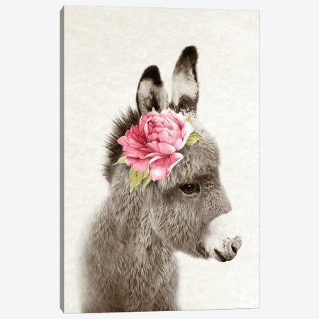 Floral Donkey Canvas Print #AVN57} by Amelie Vintage Co Canvas Wall Art
