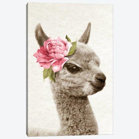 Floral Llama Canvas Print #AVN59} by Amelie Vintage Co Canvas Art Print