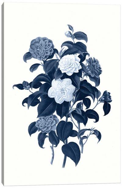 Vintage Blue Botanical II Canvas Art Print