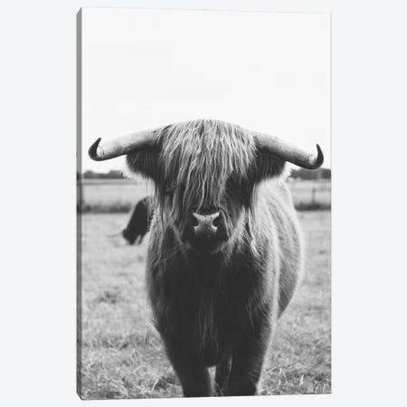 Highland Cow Canvas Print #AVN73} by Amelie Vintage Co Art Print