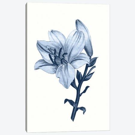 Vintage Blue Botanical III Canvas Print #AVN8} by Amelie Vintage Co Canvas Artwork