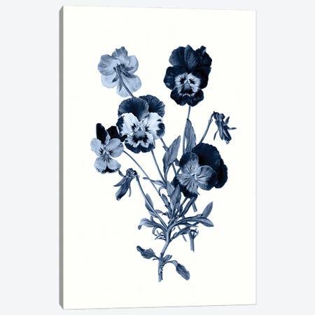 Vintage Blue Botanical IV Canvas Print #AVN9} by Amelie Vintage Co Canvas Art