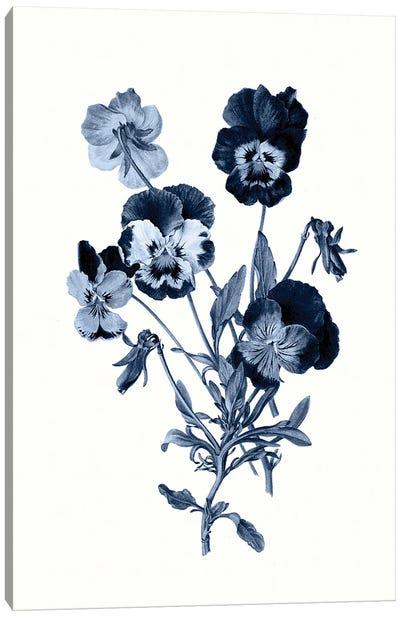 Vintage Blue Botanical IV Canvas Art Print