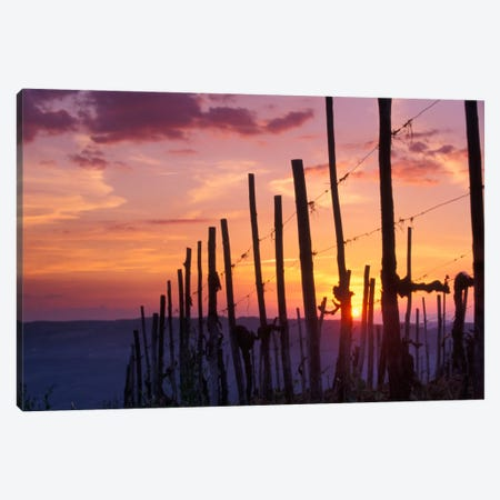 Countryside Sunset, Tuscany Region, Italy Canvas Print #AVS2} by Janis Miglavs Canvas Wall Art