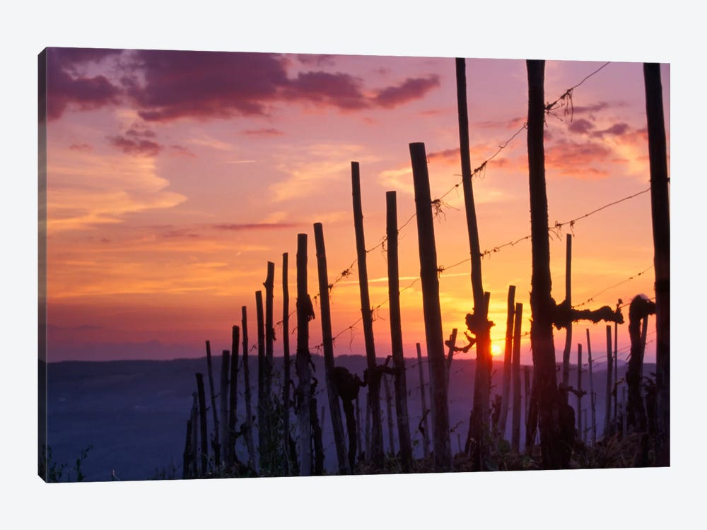 Countryside Sunset, Tuscany Region, Italy by Janis Miglavs 1-piece Art Print