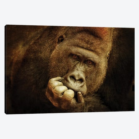 Think Different .... Canvas Print #AWB12} by Antje Wenner-Braun Canvas Art