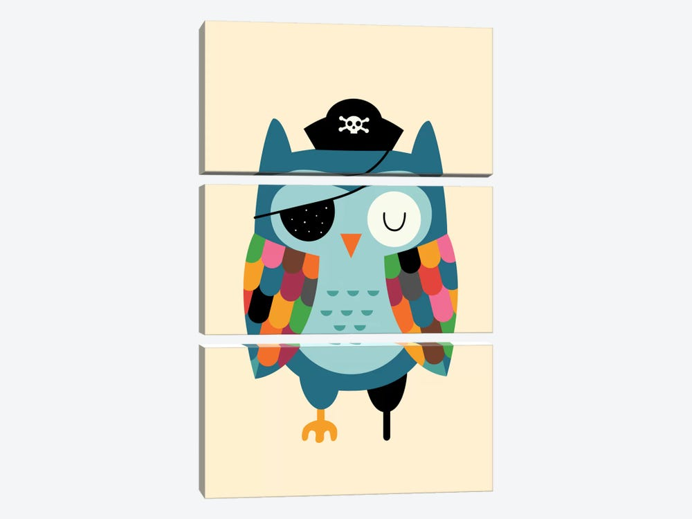 Captain Whooo by Andy Westface 3-piece Canvas Art Print