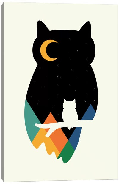 Eye On Owl Canvas Print #AWE19
