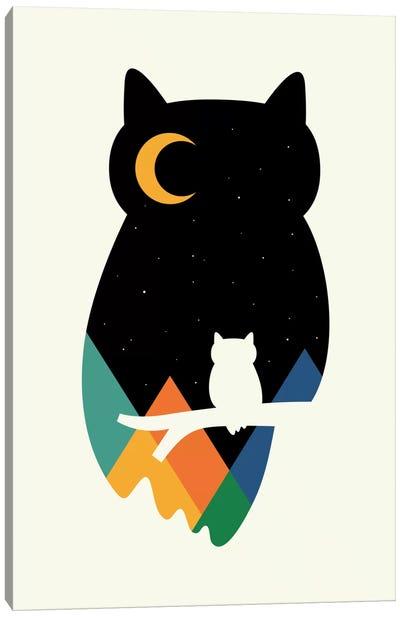 Eye On Owl Canvas Art Print