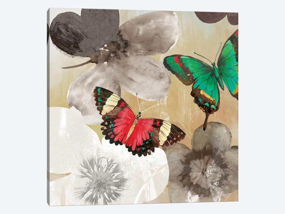 Aflutter I by Aimee Wilson 1-piece Canvas Art Print