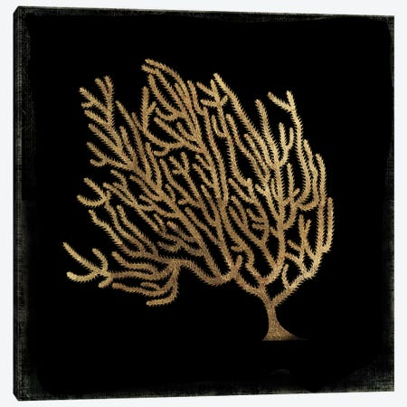 Gold Coral IV Canvas Print #AWI126} by Aimee Wilson Canvas Wall Art