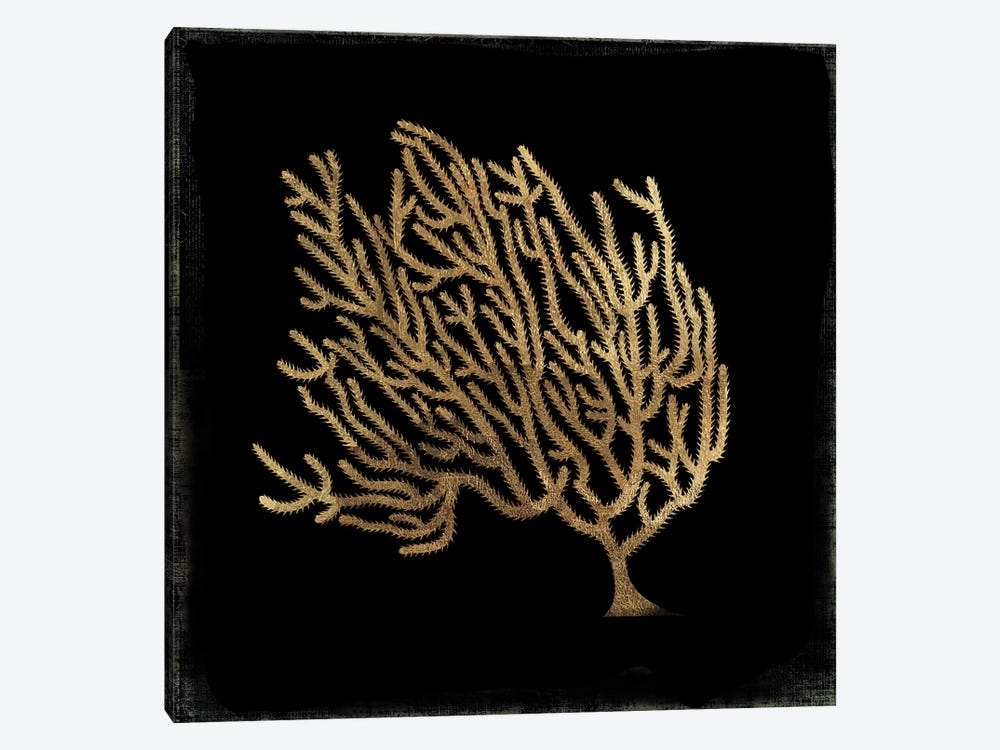 Gold Coral IV by Aimee Wilson 1-piece Canvas Artwork