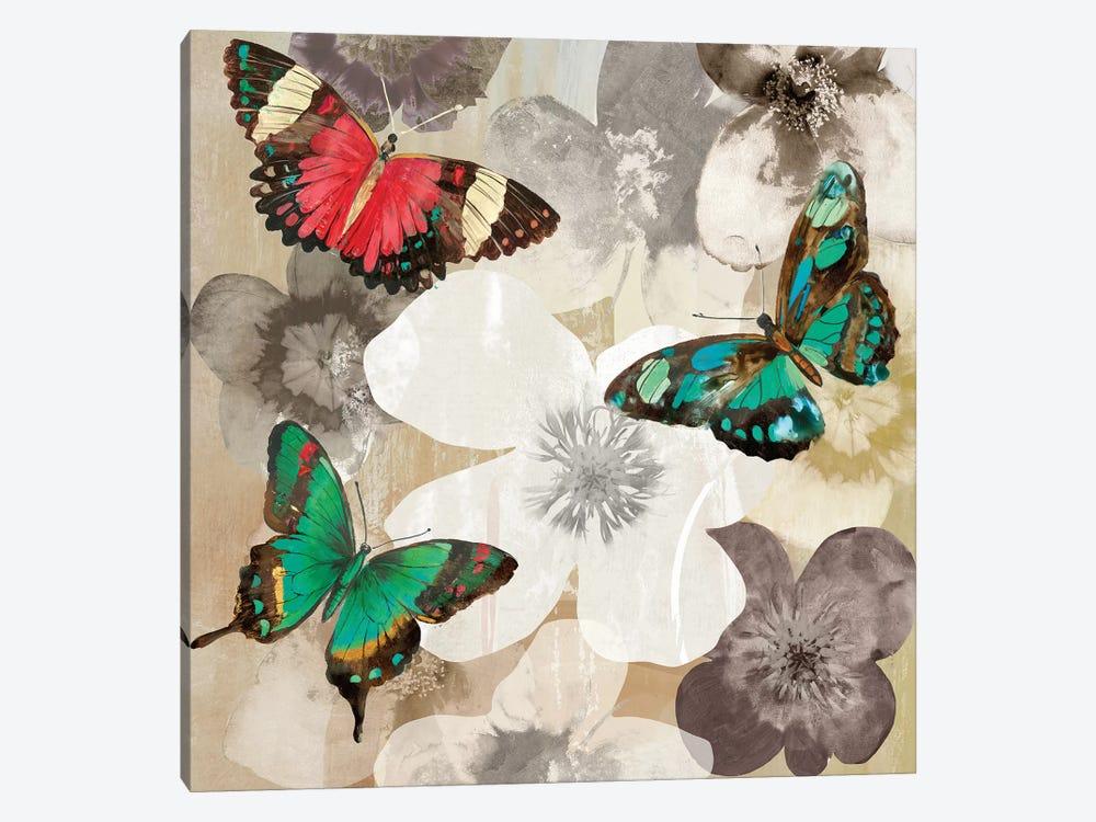 Aflutter III by Aimee Wilson 1-piece Canvas Art Print