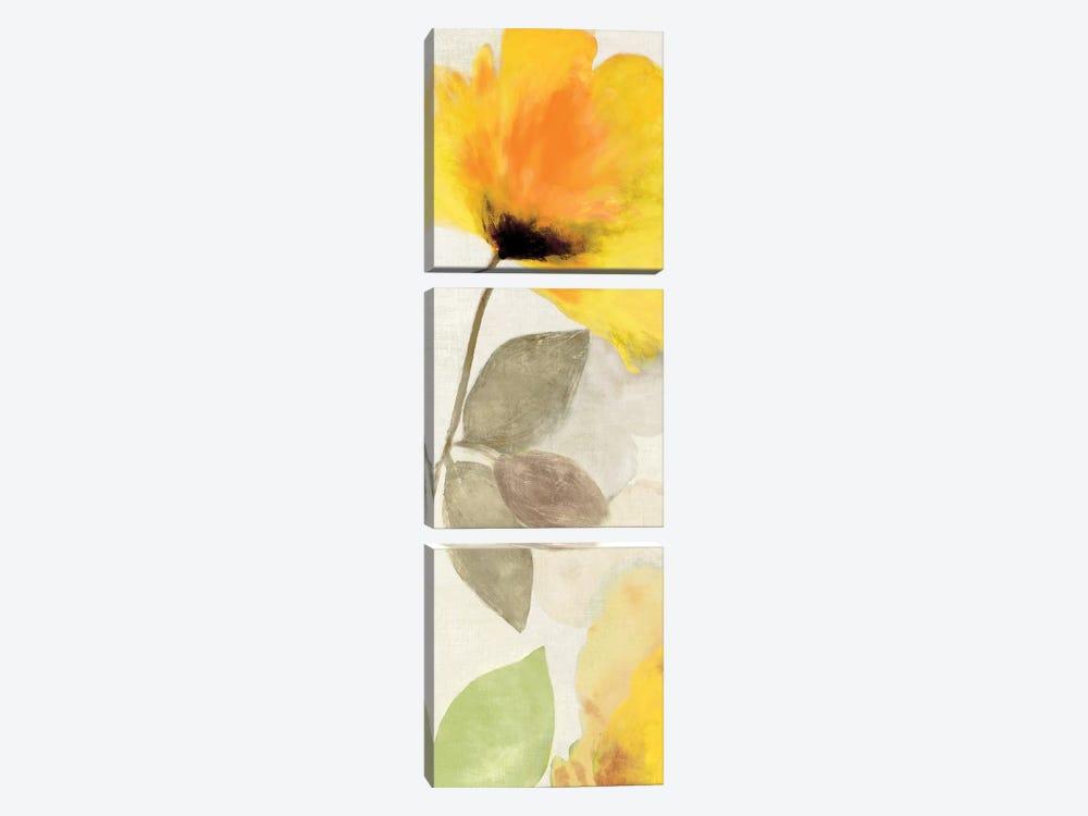 Happy Florals I by Aimee Wilson 3-piece Canvas Art Print